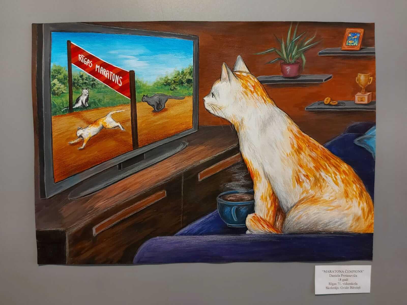 Kaķu galerija 6. Kaķu sporta maratons. Uzvarētāji.